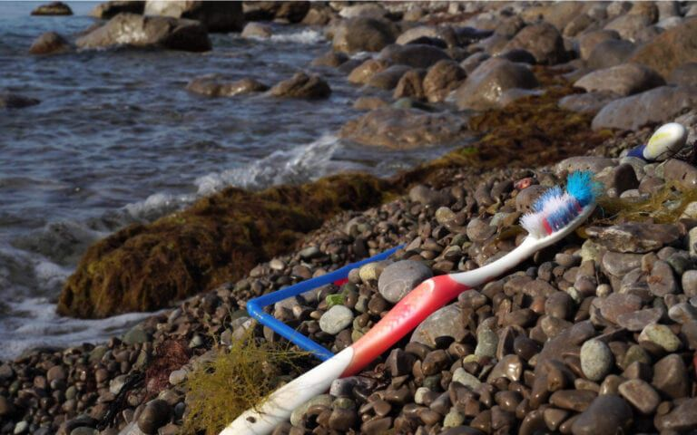 Discarded Toothbrush on the beach